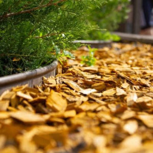 Adding mulch to your Cherry Hill, NJ property will boost your curb appeal.