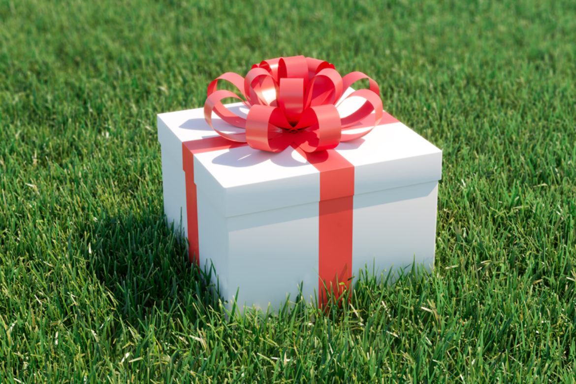 Giving the Green Gift of a Healthy Lawn This Holiday Season