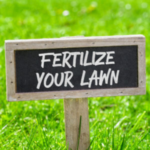Having a fertilization schedule as part of your 2020 lawn care plan in New Jersey is essential to maintaining a beautiful and healthy lawn.