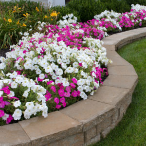 One of the must-have lawn features to add to your Cherry Hill, NJ property is a beautiful landscaped flower bed.